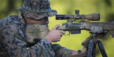 learned   marine corps scout sniper