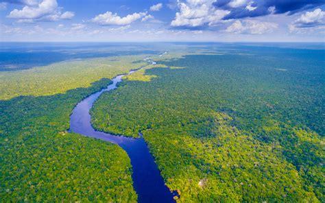 amazon rainforest  wallpaperwiki