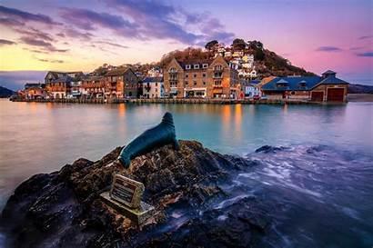 Cornwall Looe England Visit Seal Nelson Reasons