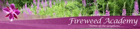 fireweed academy soundview ave homer ak