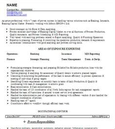 resume format for experienced mis executive mis developer senior reporting analyst free resume template