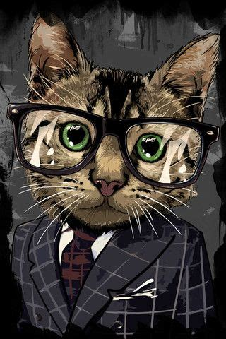 professional photos of animals 487 best animals wearing clothes cats 2 images on
