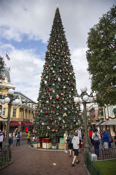 how to make the most of christmas at disneyland yellow