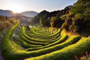 Beautiful Nature Scenery in Japan
