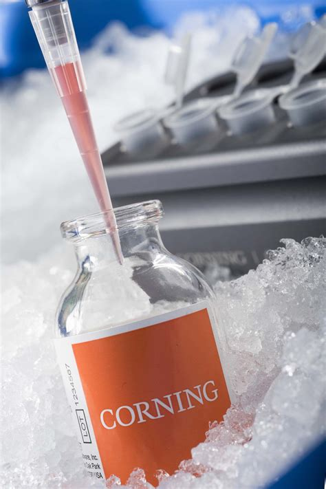 corning offers  cell culture  scale  solutions  slas