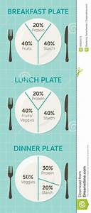 Healthy Eating Plate Diagram Stock Vector