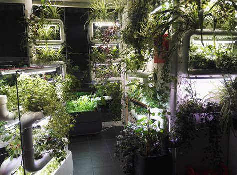 Diy Vertical Hydroponic Garden by Supragarden 174 Green Wall System Kit To Home And Office
