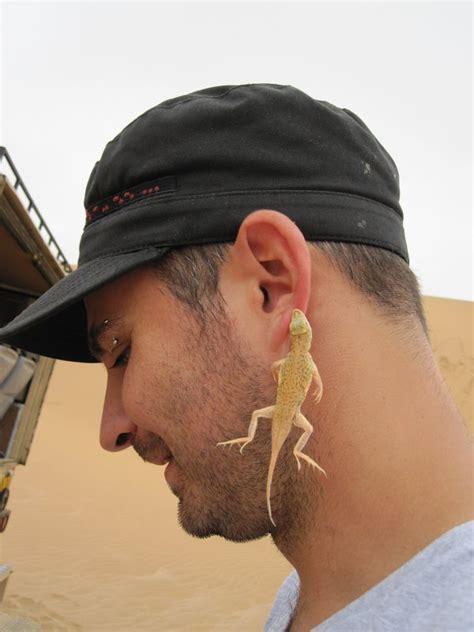 living desert   swakopmund photo