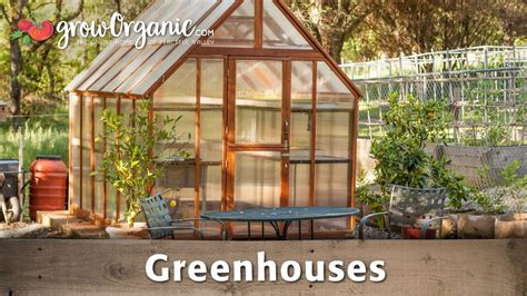 beginners guide  greenhouses youtube