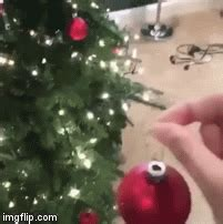 They are pulling your leg. Merry Christmas everyone! - Imgflip