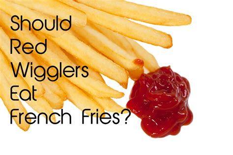 fries french eat wigglers should they