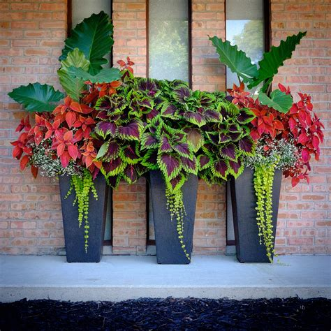 flower planter ideas front porch flower planter ideas 27 front porch flower planter ideas 27 design ideas and photos