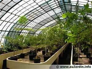 Serre Pour Plante : les serres d 39 auteuil 75 ~ Premium-room.com Idées de Décoration