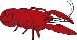 Louisiana Crawfish Clipart