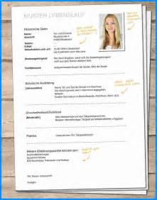 curriculum vitae template 2013 5 bewerbung lebenslauf business template