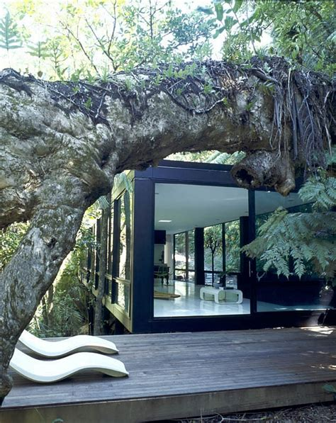 glass forest house a glass structure into an amazing forest decoholic Glass Forest House