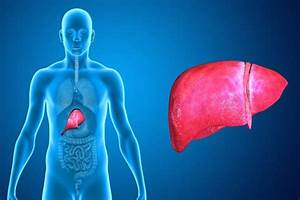 Tylenol Liver Damage Causes  Symptoms  Diagnosis And Treatment
