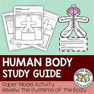 Human Body  Human Body Systems And Interactive Science