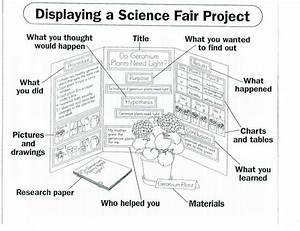 science project tri fold layout welcome fifth grade scholars prepare for the science fair