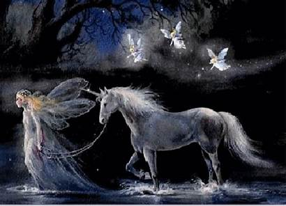 Fairy Animated Horse Angels Entertainment 3d Wallpapersafari
