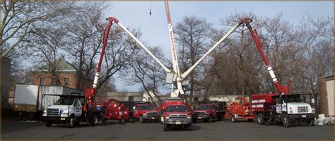 nj tree services tree removal services
