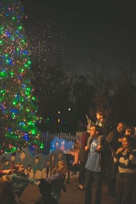 birmingham zoo christmas lights with can t miss alabama has spectacular entertainment with zoolight safari and galaxy