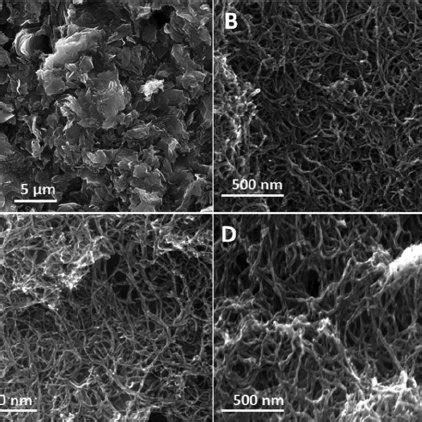 scanning electron micrographs   polished hpg electrode   scientific diagram