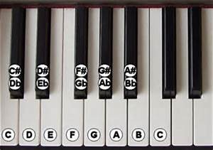 Can Labeling Your Piano Keys Help You Learn Faster?