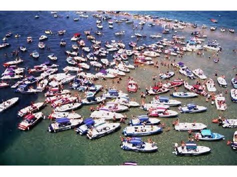 Colorado River Boat Rentals by Lake Havasu Boat Rental Boats Ships Lake Havasu City