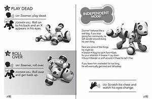 Zoomer Instruction Manual