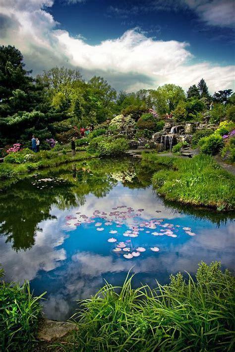 Botanischer Garten Oslo by Oslo Botanical Garden By Faisal All Things