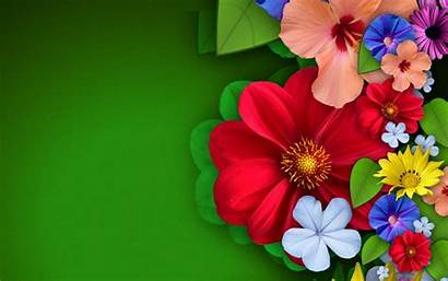 Abstract Flower Colorful Wide Wallpapers Flowers Widescreen