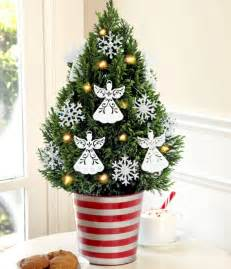 extremely small bathroom ideas tree in pot the festive decor and beautiful