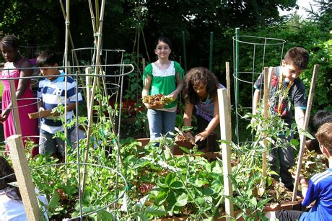 garden charter school cooperative extension s school garden project grows