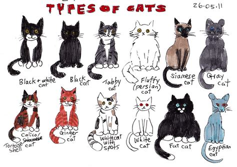 Here's A Bunch Of Cats I Drew While