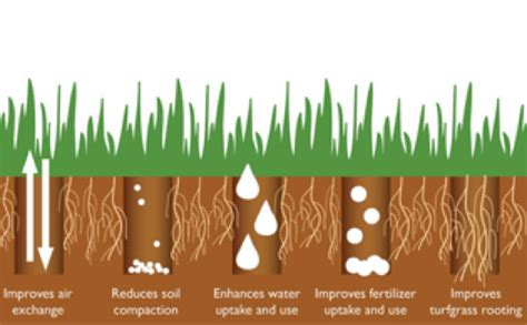benefits of aeration aeration lawnsone