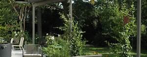 Plante Grimpante Pergola : pergola pour plante grimpante plantes grimpantes pour pergola 20 id es romantiques plantes ~ Nature-et-papiers.com Idées de Décoration