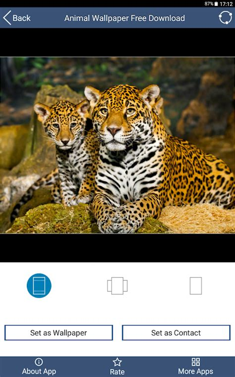 Animal Wallpaper App - animal wallpaper free android apps on play