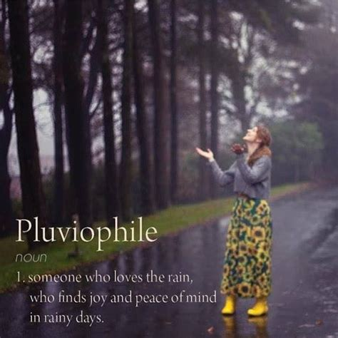 Rainy Day Meme - pluviophile someone who loves the rain who finds joy and peace of mind in rainy days words