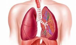 Making Pneumothorax Treatment Less Painful