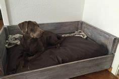 Hundebett Mit Treppe : holz kaffeetisch hundebett selber bauen hundeh tte ~ Michelbontemps.com Haus und Dekorationen