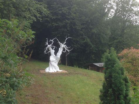 Olivenbaum Im Haus by Der Weisse Olivenbaum W 220 Renblicker