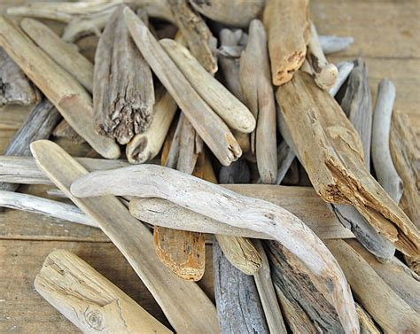 preserved flowers lake superior driftwood 6 quot 12 quot 50 pcs