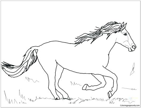 horse cute  coloring page  coloring pages