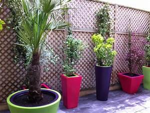 Plantes Grimpantes Pot Pour Terrasse : id es de d coration de petite terrasse astuces bricolage ~ Premium-room.com Idées de Décoration