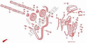 Camshaft  Timing Belt  Dohc  For Honda Cars Civic Crx 1 6i