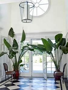 Pflanzen Wohnzimmer Feng Shui : feng shui pflanzen ber die schutz und komfortfunktion der zimmerpflanzen ~ Bigdaddyawards.com Haus und Dekorationen