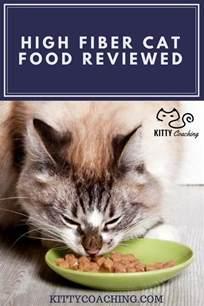 high fiber cat food high fiber cat food reviewed kitty coaching
