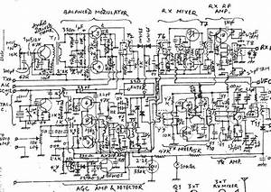 Branch Circuit Diagram