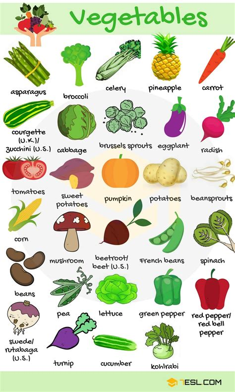 list  vegetables  vegetables names  images